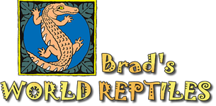 Brad's World Reptiles